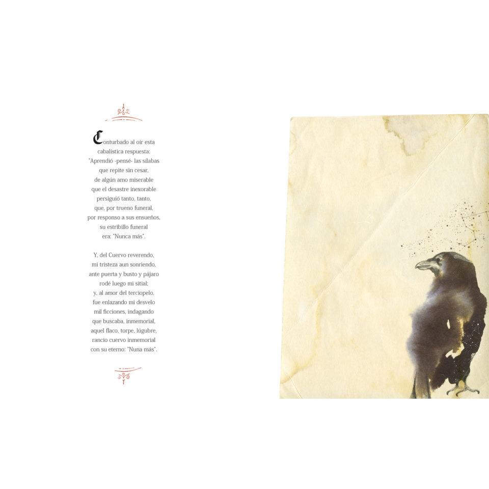 cuervo5